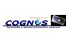 cognos